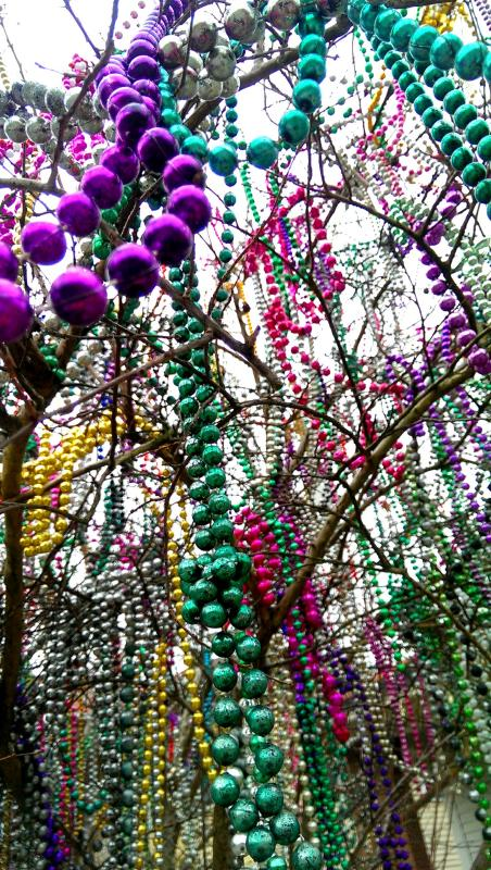 Mardi Gras 2015 Memories